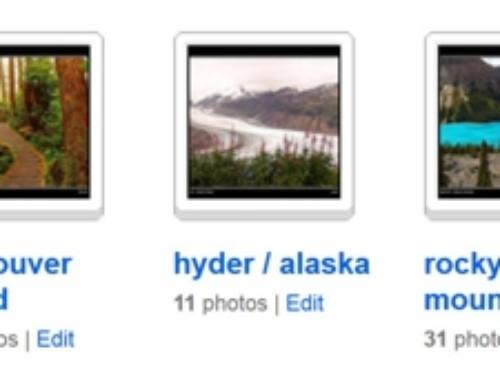 Flickr – das grösste Fotoarchiv des Internets