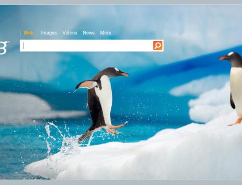 Bing doch mal… – Die Suchmaschine von Microsoft