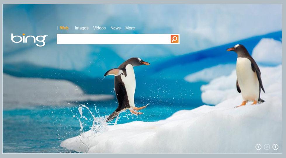 Bing Suchdienst von Microsoft
