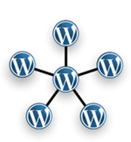 Wordpress Multisite Funktion