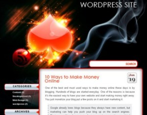 WordPress Themes for you