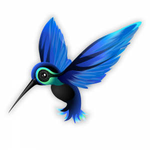 google kolibri update